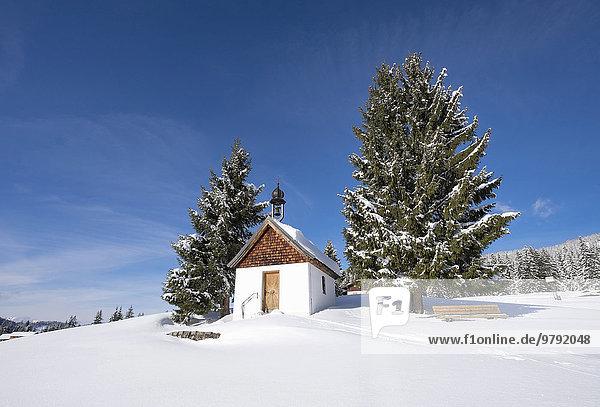 Kapelle Mariä Himmelfahrt  Winklmoosalm  Reit im Winkl  Chiemgauer Alpen  Oberbayern  Bayern  Deutschland  Europa
