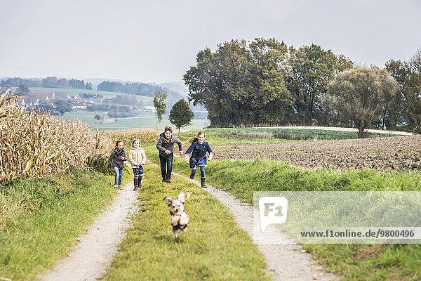 Spur rennen Bauernhof Hof Höfe