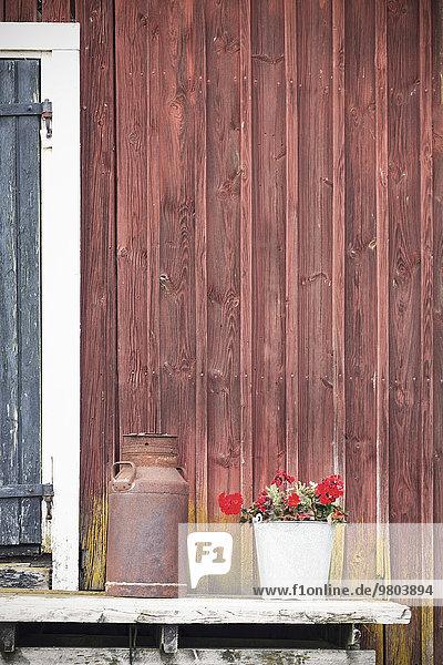 Blumentopf und rostiger Behälter außerhalb der Scheune