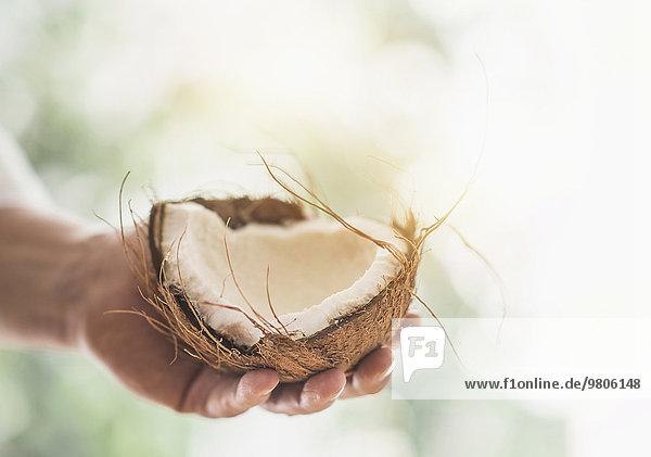 Anschnitt Mann halten Close-up Kokosnuss