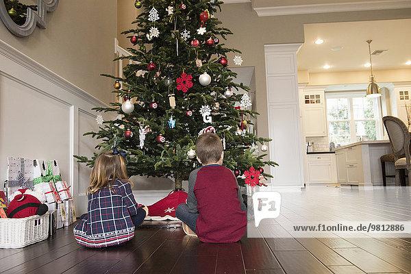 Rückansicht der Geschwister vor dem Weihnachtsbaum