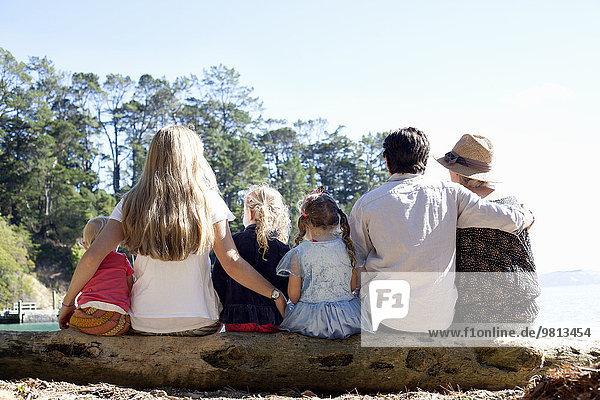Rückansicht von Familienfreunden auf Baumstamm am Strand  Neuseeland