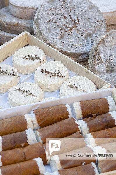 Ausstellung von Frischkäse am Marktstand  Provence  Frankreich