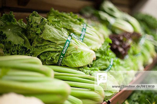 Reihe von grünem Gemüse im Reformhaus