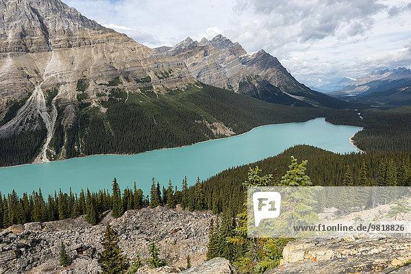 Kanada  Britisch-Kolumbien  Banff-Nationalpark  Peyto Lake