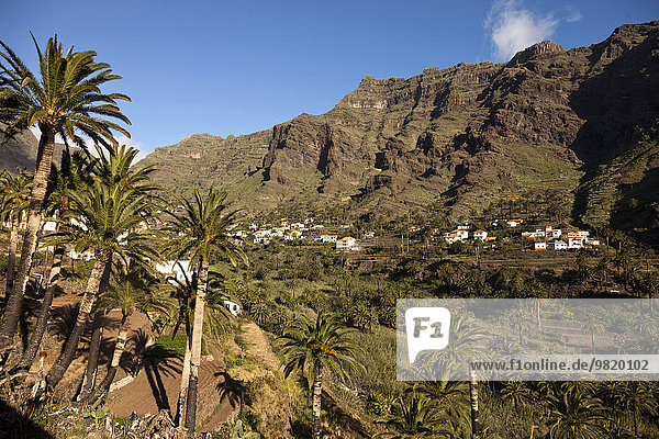 Spanien  Kanarische Inseln  La Gomera  Valle Gran Rey  Blick auf Bergdorf und Palmen und Terrassenfelder