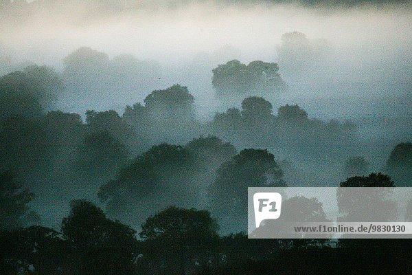 britisch Landschaft Dunst Derbyshire Abenddämmerung