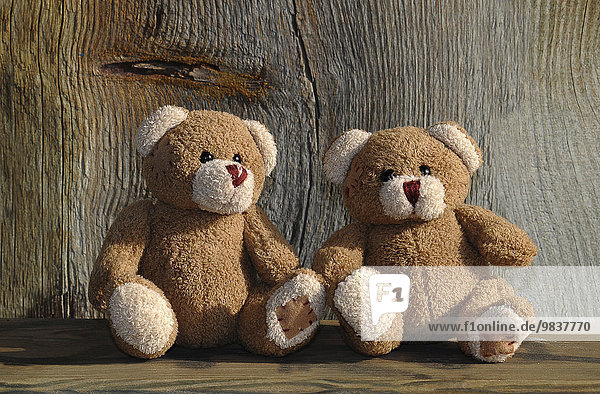 Zwei Teddybären auf einer Holzbank vor Holz