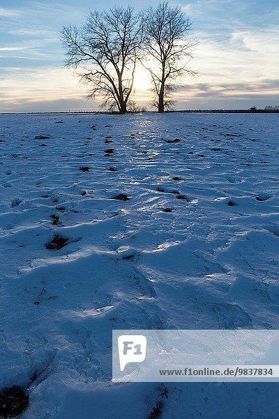 Schnee Weite Geographie Russland