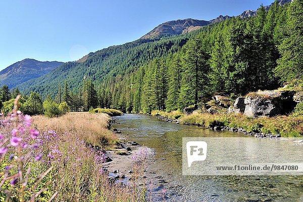 Frankreich Tal Fluss Französische Alpen