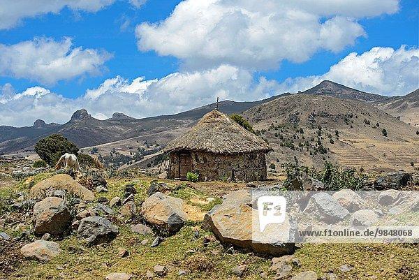 Dach Hütte Berg Landschaft Highlands Reetdach Äthiopien rund