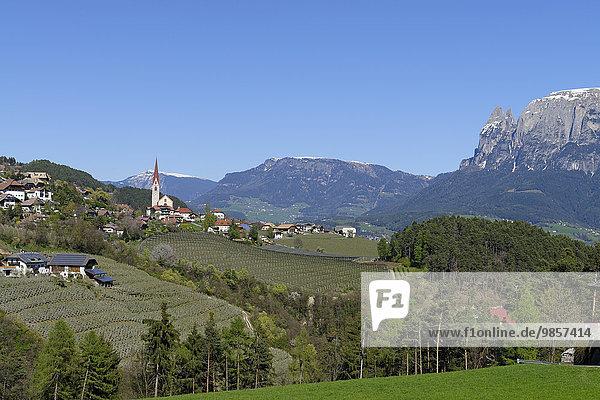 Landschaft bei Unterinn am Ritten Renon mit Schlernmassiv  bei Bozen  Südtirol  Italien  Europa