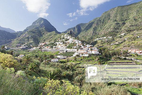 Hermigua  Zwillingsfelsen  Roques de San Pedro  Bananenplantagen  La Gomera  Kanarische Inseln  Spanien  Europa