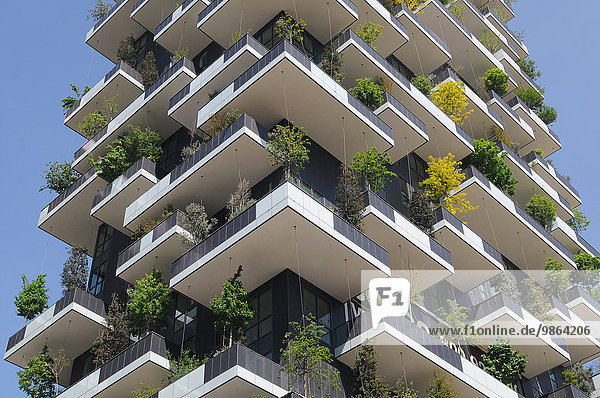 Italy  Lombardy  Milan  the vertical garden building