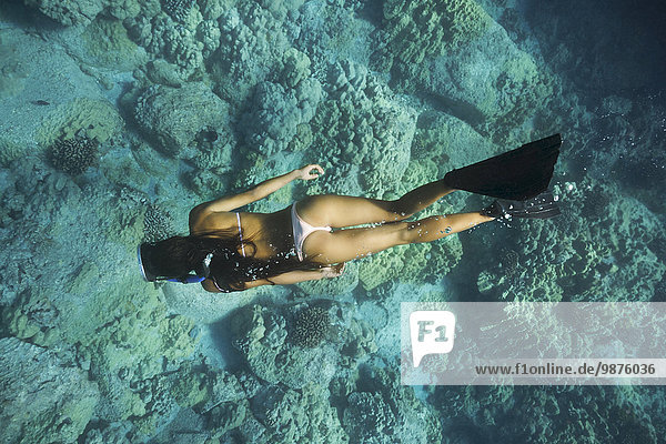 nahe Tropisch Tropen subtropisch Frau mischen schnorcheln Mixed Riff