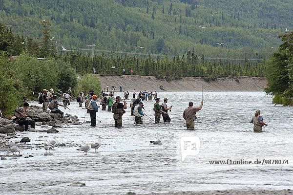 Vereinigte Staaten von Amerika USA Sommer Fluss angeln Schlacht Lachs Heiligtum Kenai-Fjords-Nationalpark Rotlachs Oncorhynchus nerka Ritual russisch
