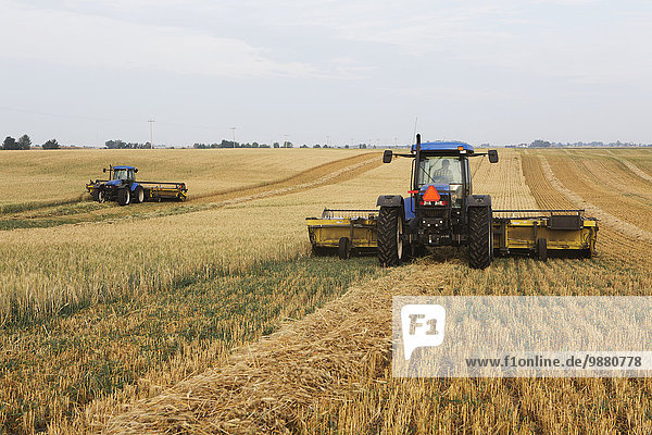 schneiden Feld 2 Weizenfeld Alberta Kanada