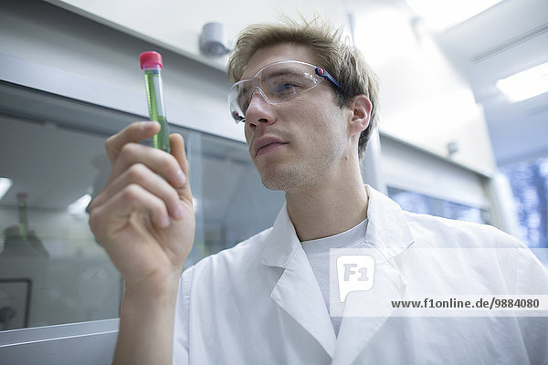 Male scientist looking test tube in lab