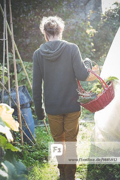 Junger Mann mit Korb mit einheimischem Gemüse