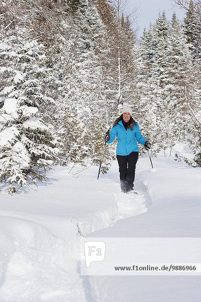 Frau Winter bedecken Wald Schneeschuh Schnee