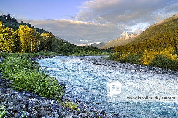 Farbaufnahme Farbe Hektik Druck hektisch Fluss Herbst British Columbia Kanada Laub Farbaufnahme,Farbe,Hektik,Druck,hektisch,Fluss,Herbst,British Columbia,Kanada,Laub