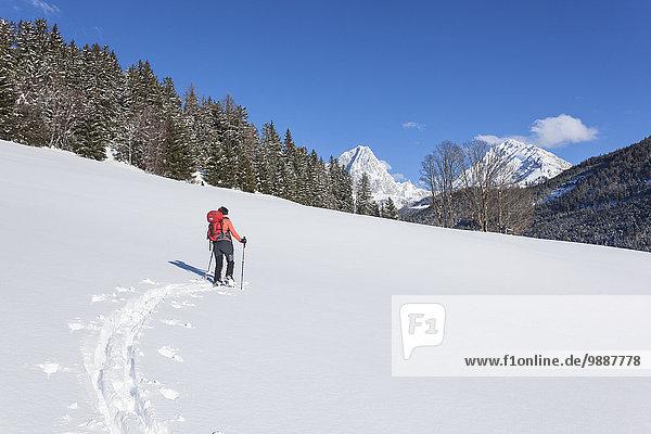 Frau beim Skiwandern  Pongau  Salzburger Land  Österreich  Europa