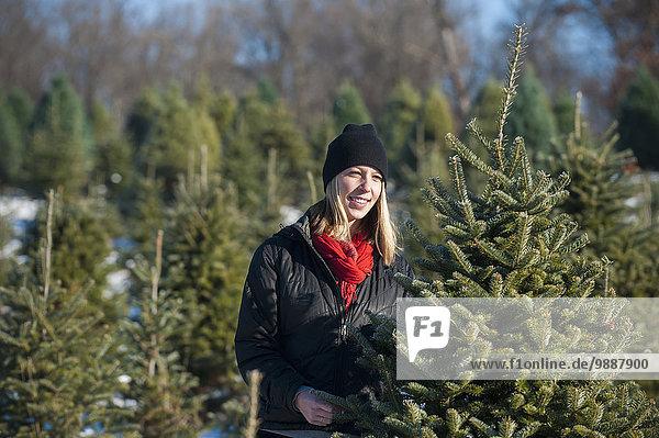 Frau Frische Bauernhof Hof Höfe Weihnachtsbaum Tannenbaum auswählen Verbindung