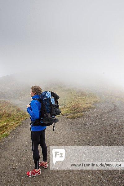 Male hiker looking out over misty landscape  Grindelwald  Switzerland