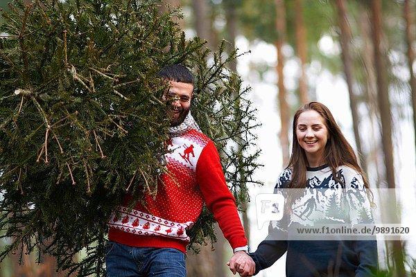 Junges Paar mit Weihnachtsbaum auf den Schultern im Wald