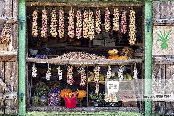 Estland  Stand mit erntefrischem Bio-Gemüse und Obst aus eigenem Anbau