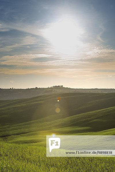 Italien  Toskana  Val d'Orcia  hügelige Landschaft im Gegenlicht
