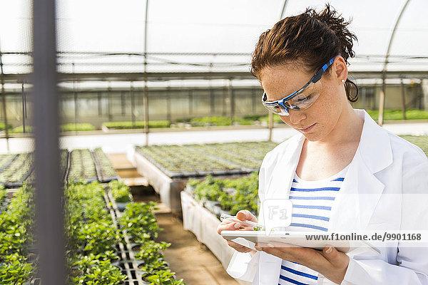 Junge Gärtnerin untersucht Pflanzen in der Baumschule
