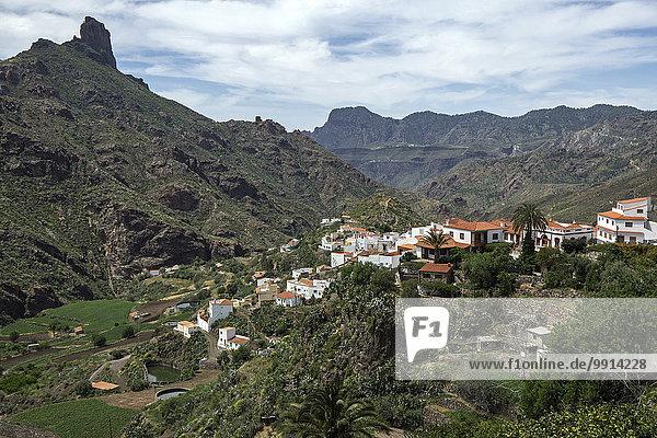 Ausblick auf Tejeda  den Barranco de Tejeda und Roque Bentayga  Gran Canaria  Kanarische Inseln  Spanien  Europa