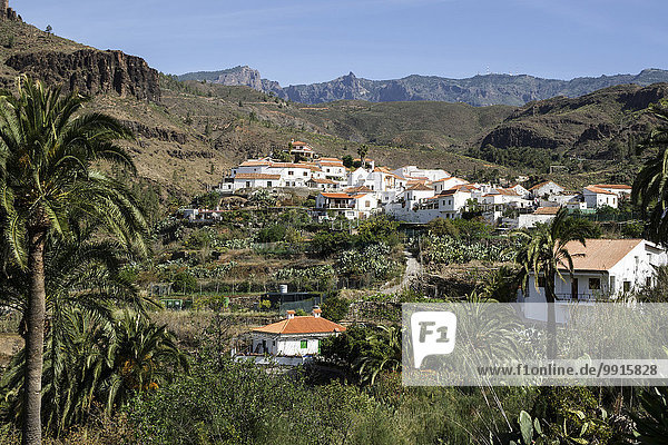 Fataga  Gran Canaria  Kanarische Inseln  Spanien  Europa