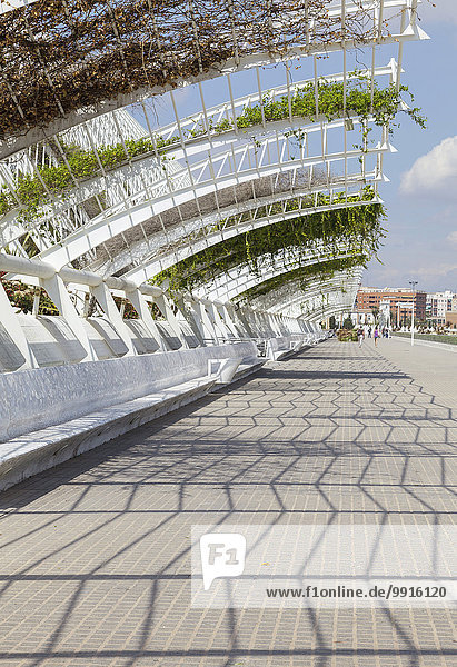 Die Stadt der Künste und Wissenschaften  L'Umbracle  oberer Gehweg  Valencia  Spanien  Europa