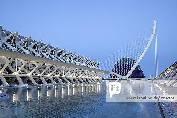 Die Stadt der Künste und Wissenschaften mit der Agora und dem Museu de les Ciencies Príncipe Felipe Wissenschaftsmuseum  Valencia  Spanien  Europa