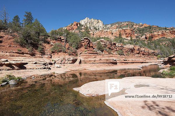 Vereinigte Staaten von Amerika USA Landschaftlich schön landschaftlich reizvoll Eiche Bach Arizona Ansicht Schlucht Sedona