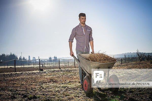 Junger Mann mit Schubkarre im Feld