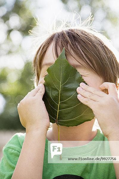 Boy (6-7) holding leaf on face