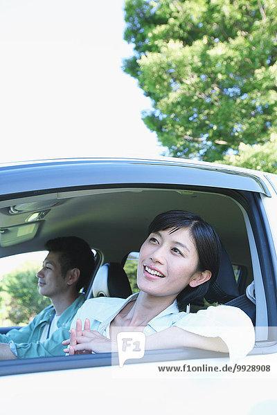 Auto Natur japanisch
