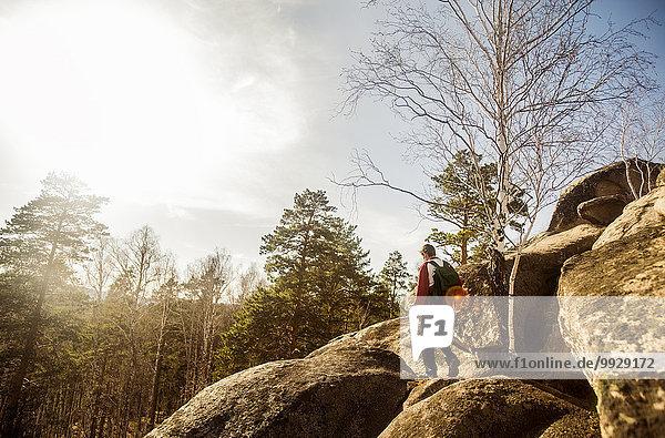 Felsbrocken Europäer Mann Wald Anordnung wandern