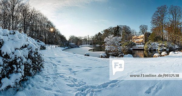 Europa Winter Wohnhaus Baum Wald See Eis Holz Reichtum Niederlande Schnee Villa