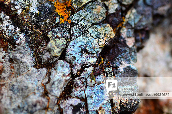 England  Cornwall  lizard point  rocks  cliffs  rock  serpentinit  Great Britain  Europe