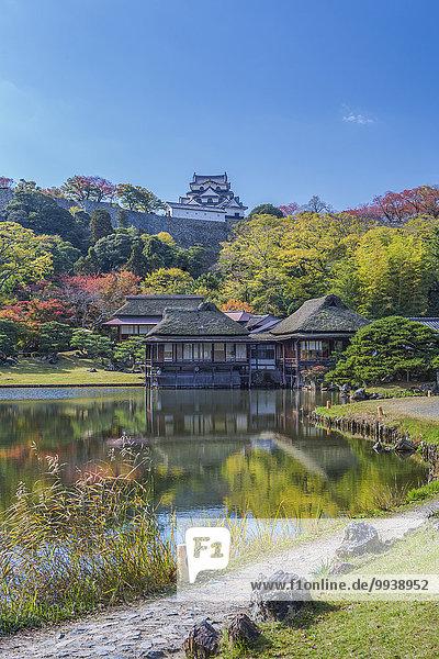 Tradition Wohnhaus Landschaft Gebäude niemand Reise Spiegelung Großstadt Architektur Geschichte bunt Tourismus Asien Japan Teich Tee