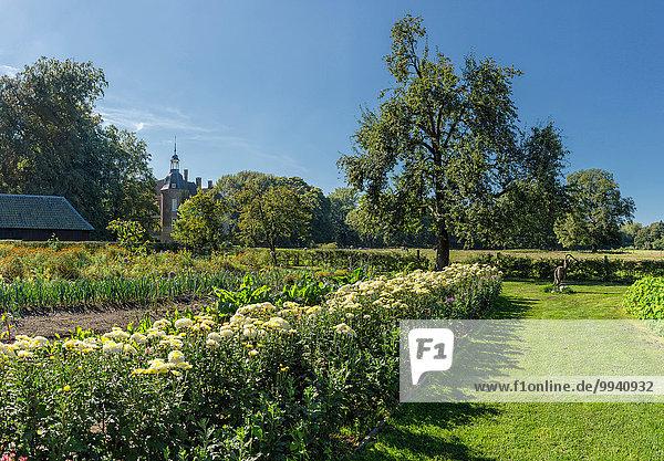 Europa, Blume, Wohngebäude, Sommer, Landschaft, Garten, Niederlande, Ziergarten, Gelderland