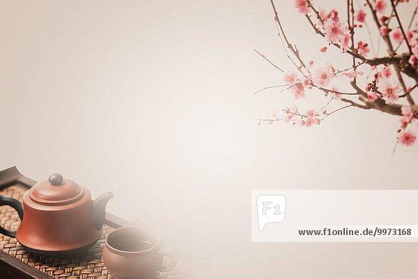 Blume Pflaume Tee