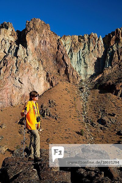 Felsbrocken Steilküste