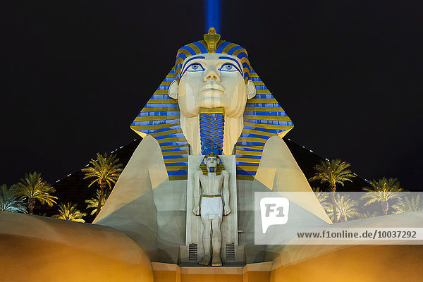 Sphinx Pyramide und Palmen  Nachtaufnahme  Hotel Luxor Las Vegas  Casino  Strip  Las Vegas  Nevada  USA  Nordamerika