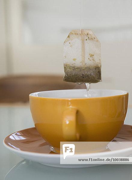 Tea bag suspended above mug  Munich  Bavaria  Germany