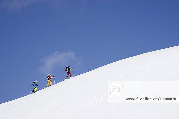 Ski mountaineers climbing on snowy peak  Tyrol  Austria